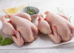 鸡肉餐桌上的主要材料,吃法繁多